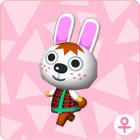 File:Rabbit006.jpg
