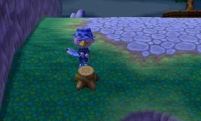 File:Flower stump.jpg