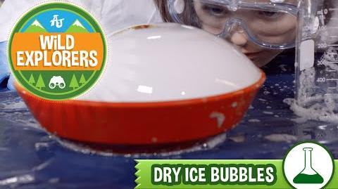 How To Make A Dry Ice Bubble!