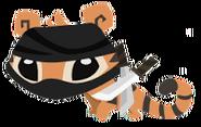 Ninja Tigers