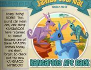 Jamaa-Journal-178 Kangaroos-Are-Back