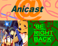 Anicast bumper 3