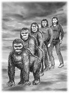 Animorphs the predator book 5 david mattingly original sketch