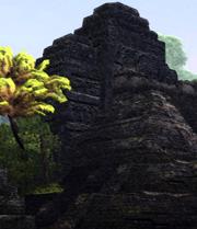 File:PurpleLotusSwamp1.jpg