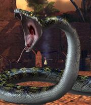 Snake big