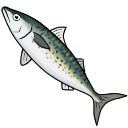 File:Mackerel (ToV).png