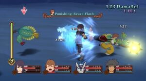 Punishing Beast Flash (ToV)
