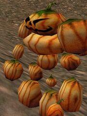 Pumpkin Lord Live