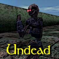 Undead Exemplar