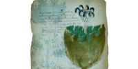 "Database: ""Voynich Manuscript"" - Folio 35r"