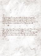 Codex P17 v