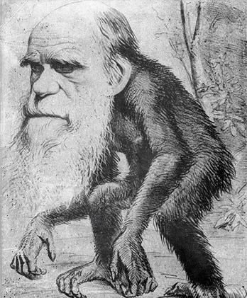 File:XIX Darwin Caricature.png