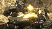 Warthog charge