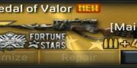 M24S., Medal of Valor