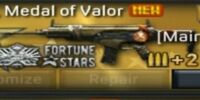 ARX-160, Medal of Valor