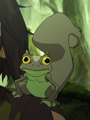 Frog squirrel.png