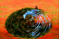 Thumbnail for version as of 05:01, February 21, 2009