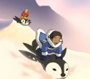 Penguin sledding