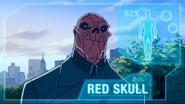 RedSkullAAComputer