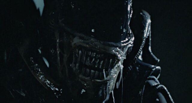 File:Aliens-listing.jpg