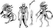 Vampirella-Aliens-xenomorph-inkeditedWeb-d783a