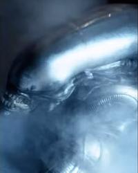 The Alien 1979