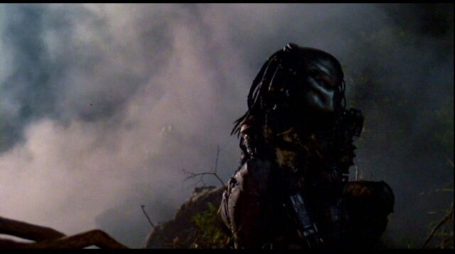 File:Predator 63.jpg
