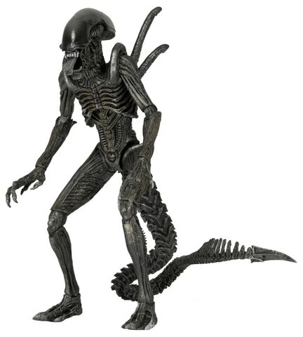 File:Vetrelci-serie-7-avp-warrior-alien-figurka-0.jpg.big.jpg