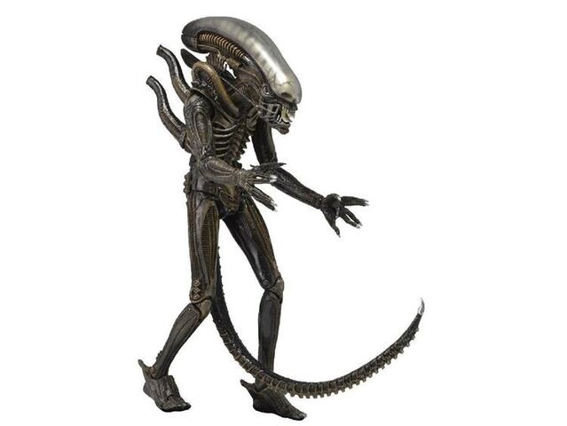 File:Aliens 7 Inch Series 2 1979 Alien Action Figure by NECA 09847.1391059456.1280.1280.jpg