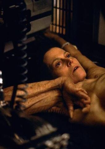 File:Ripley 7.jpg