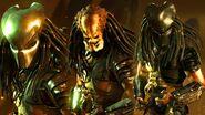 Predator variations