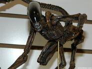 NECA Dog Alien at TF14