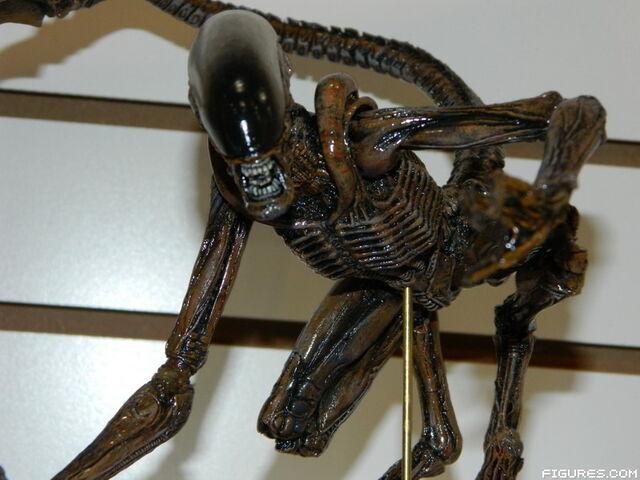 File:NECA Dog Alien at TF14.JPG
