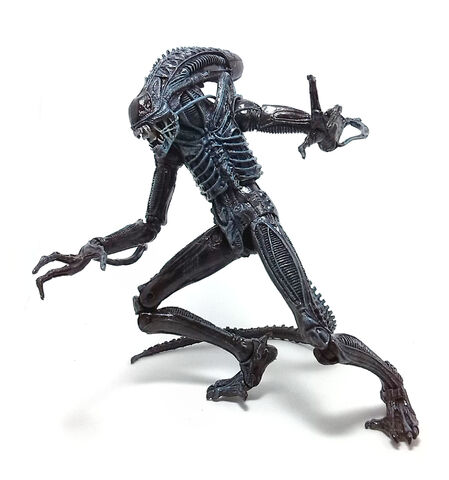 File:Xenomorph-Warrior-3.jpg