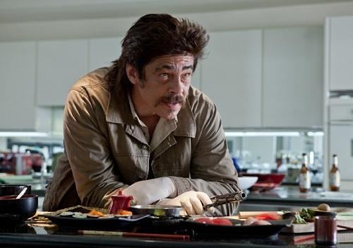 File:Benicio-del-toro-in-savages 500x351.jpg