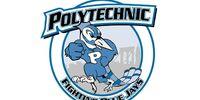 NYU Polytechnic Fighting Blue Jays