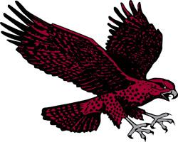 File:UMES Hawks.jpg