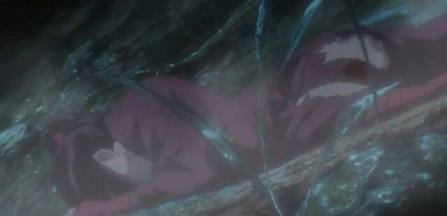 File:Hotarubi injured.jpg