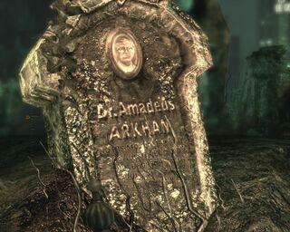 Amadeus aa--article image