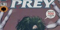 Birds of Prey Issue 16