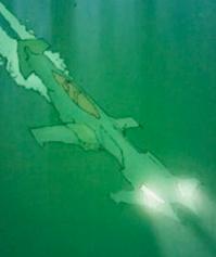 File:Batboat-AC prequel comic.png