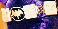 Batgirl's utility belt