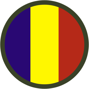File:300px-TRADOC patch.png