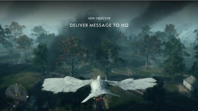 File:Carrier Pigeon 1.jpg