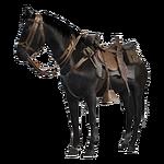 BF1 Horse