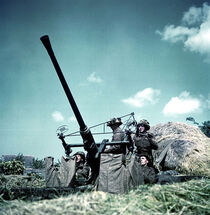 585px-Bofors-p004596