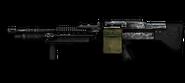 M60 Veteran
