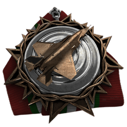 File:Jet Fighter Medal.png