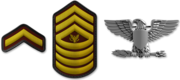BF3-Ranks png-550x0
