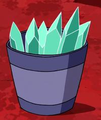 Tayden bucket
